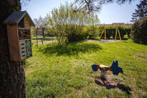 013 - skolka zahrada